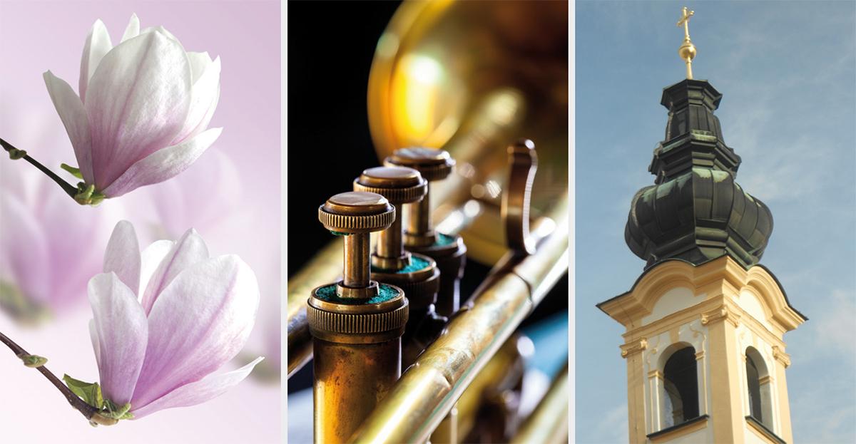 Salzburger Musikverein